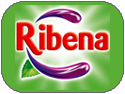 Mister Nice Cream introduces the Ribena Fruit Juices by Ribena